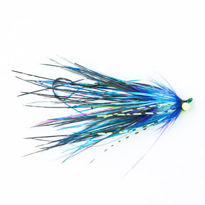 Aquaflies Intruder Selection - Rhea Intruder Black/Blue