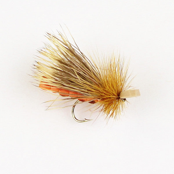 Morrish October Caddis Adult
