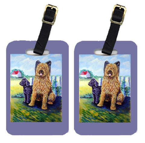 Buy this Pair of 2 Briard Training Day for the puppy Luggage Tags