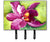 Buy this Orchid Leash or Key Holder JMK1120TH68