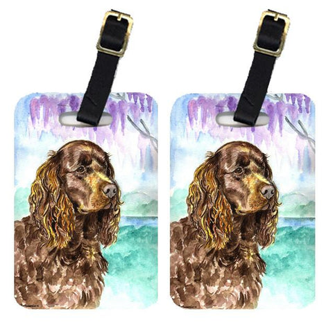 Buy this Pair of 2 American Water Spaniel Luggage Tags
