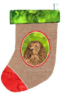Buy this American Water Spaniel Christmas Stocking SS2012