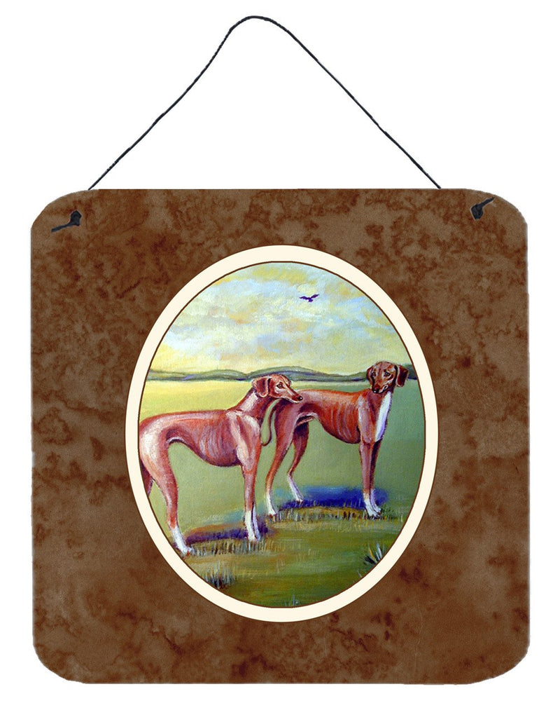 Azawakh Hound Wall or Door Hanging Prints 7001DS66 - the-store.com