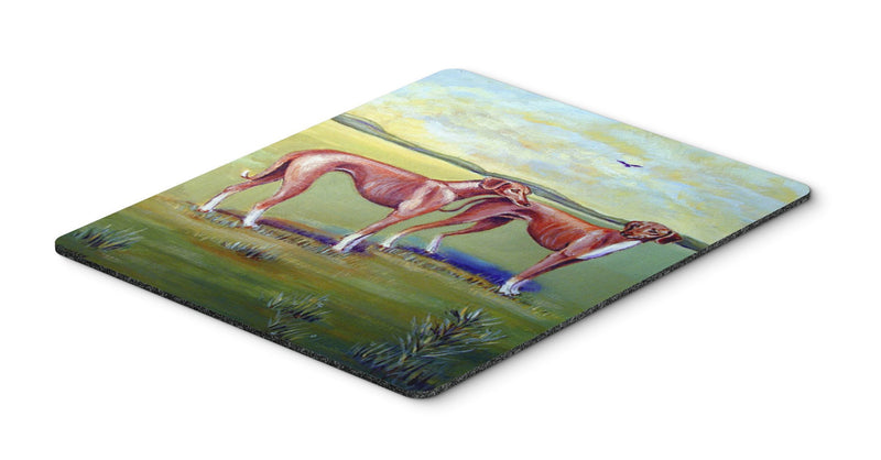 Buy this Azawakh Hound Mouse Pad, Hot Pad or Trivet