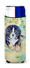 Bernese Mountain Dog Puppy Ultra Beverage Insulators for slim cans 7010MUK by Caroline's Treasures