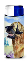 Leonberger Ultra Beverage Insulators for slim cans 7056MUK by Caroline's Treasures
