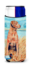 Chesapeake Bay Retriever Ultra Beverage Insulators for slim cans 7112MUK by Caroline's Treasures