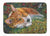 Buy this Corgi Pastel Hummingbird Machine Washable Memory Foam Mat 7326RUG