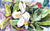 Buy this Magnolia Fabric Placemat 8700PLMT