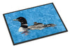 Loon  Indoor or Outdoor Mat 18x27 Doormat - the-store.com