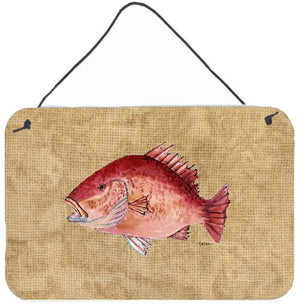 Buy this Strawberry Snapper Aluminium Metal Wall or Door Hanging Prints