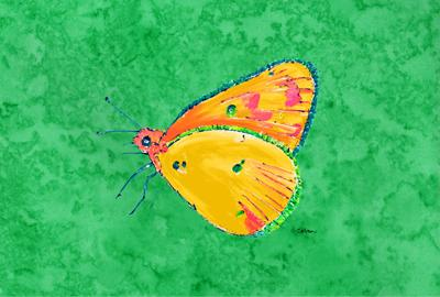 Butterfly Orange on Green Fabric Placemat by Caroline's Treasures