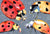 Lady Bug Multiple Fabric Placemat by Caroline's Treasures