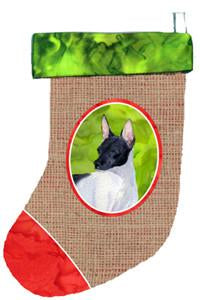 Buy this Rat Terrier Christmas Stocking SS2050