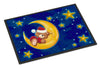 Bear Sleeping in the Moon and Stars Indoor or Outdoor Mat 18x27 APH514BMAT - the-store.com