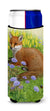 Buy this Springtime Fox Ultra Beverage Insulators for slim cans ASA2160MUK