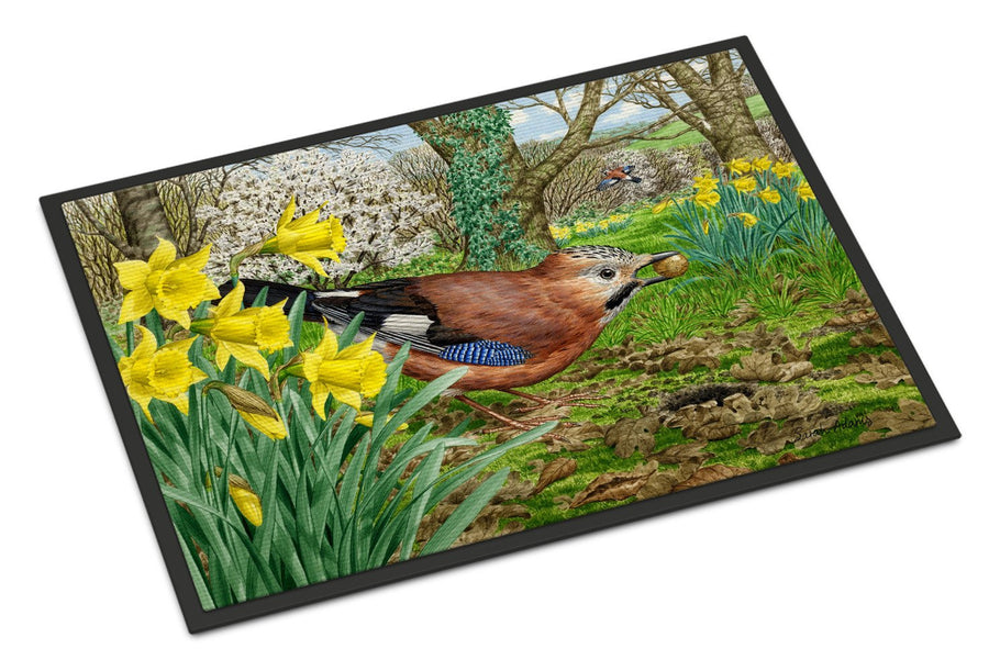 Buy this Jay Indoor or Outdoor Mat 18x27 ASA2176MAT
