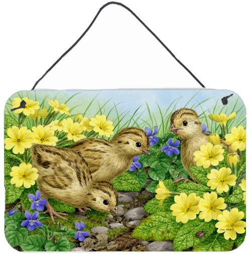 Buy this Pheasant Chicks Wall or Door Hanging Prints