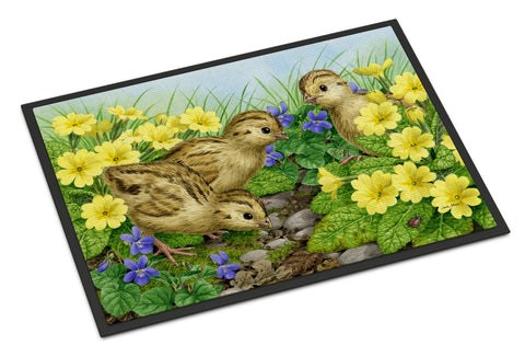 Buy this Pheasant Chicks Indoor or Outdoor Mat 18x27 ASA2177MAT