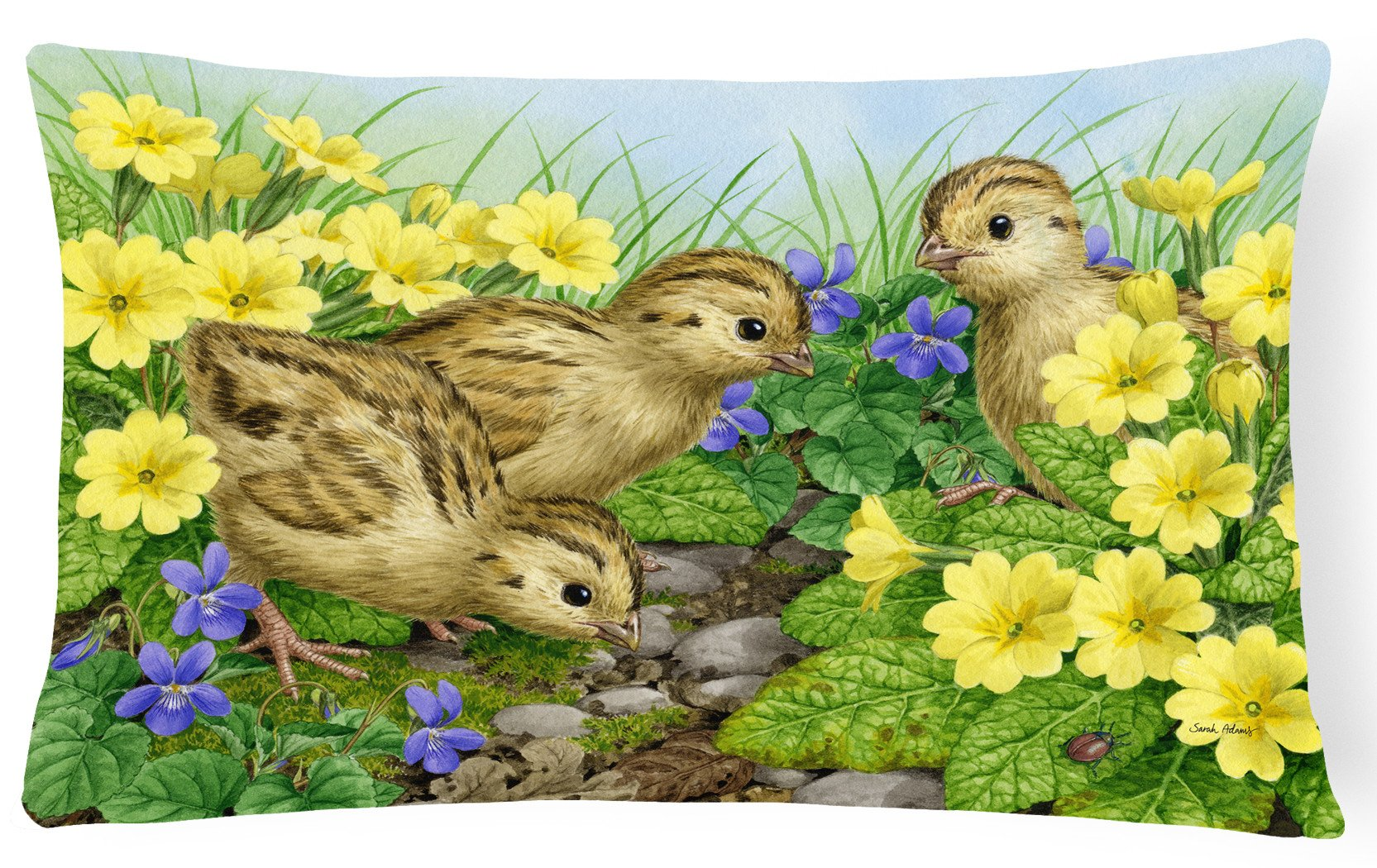 Pheasant Chicks Fabric Decorative Pillow ASA2177PW1216 by Caroline's Treasures