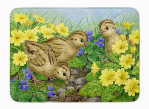 Buy this Pheasant Chicks Machine Washable Memory Foam Mat ASA2177RUG