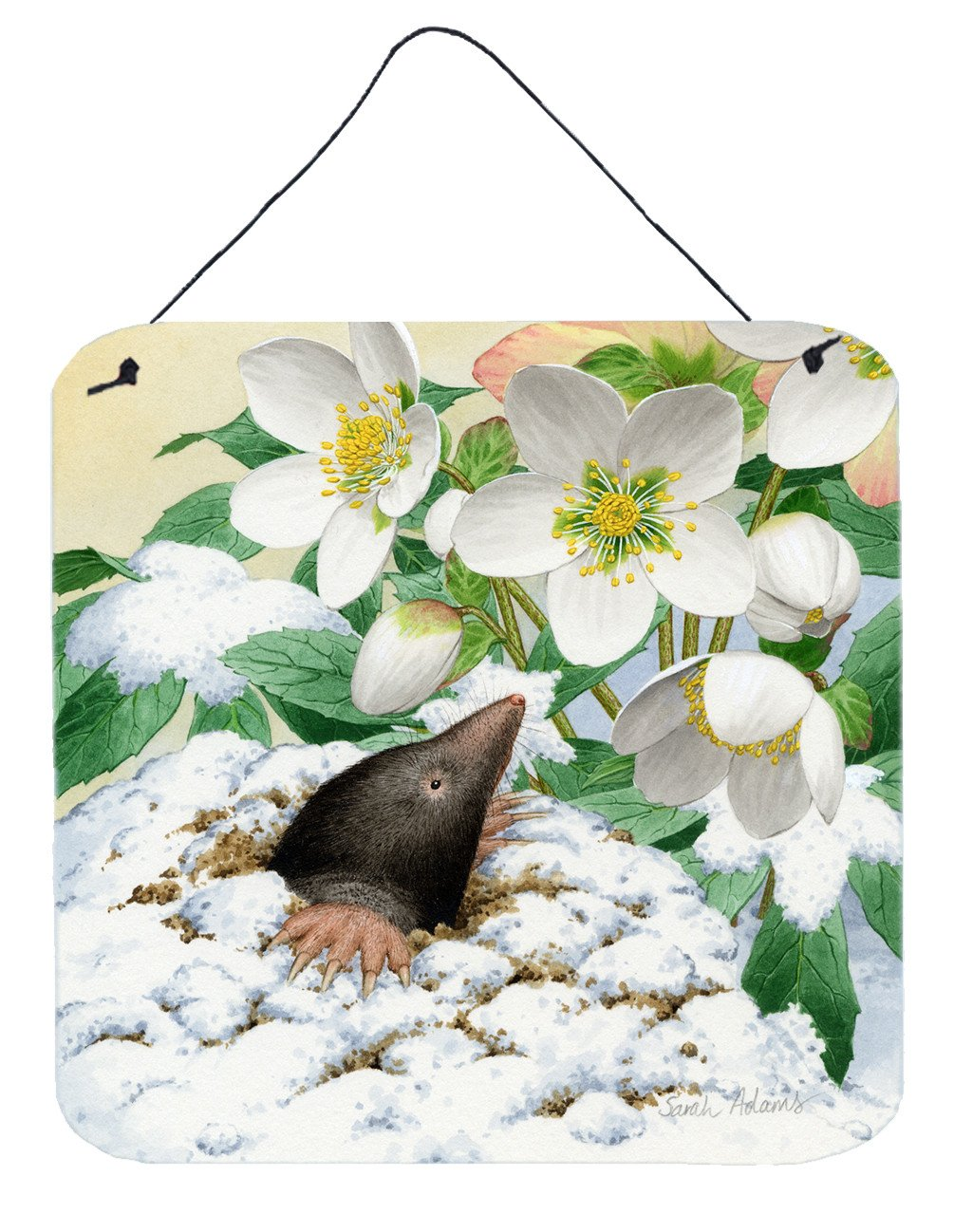 Buy this Mole by Sarah Adams Wall or Door Hanging Prints ASAD0387DS66