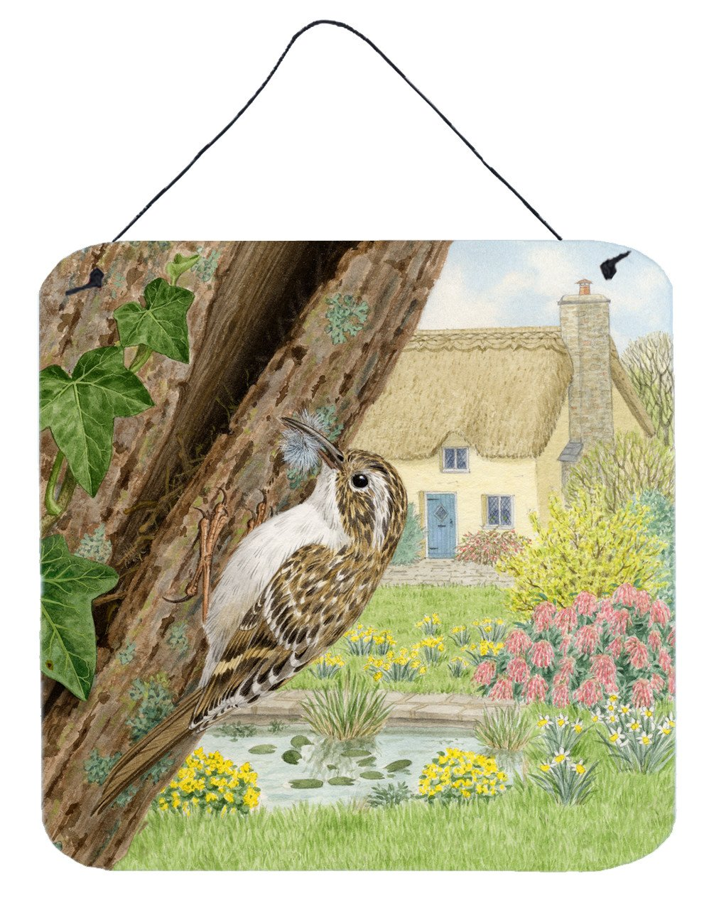 Buy this Treecreeper by Sarah Adams Wall or Door Hanging Prints ASAD0680DS66