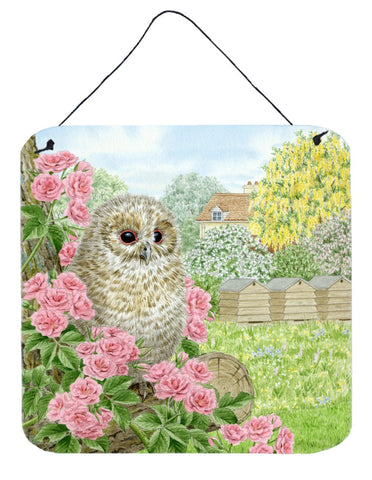 Buy this Tawny Owlet by Sarah Adams Wall or Door Hanging Prints ASAD0697DS66
