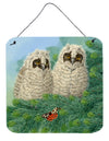 Owlets and Butterfly by Sarah Adams Wall or Door Hanging Prints ASAD0724DS66 by Caroline's Treasures