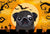 Halloween Black Pug Fabric Placemat BB1821PLMT by Caroline's Treasures