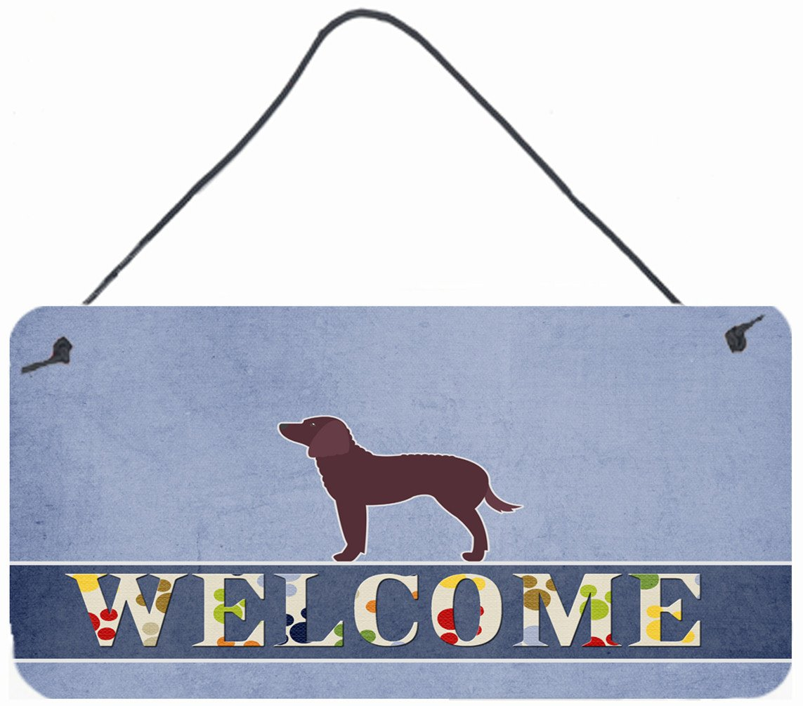 American Water Spaniel Welcome Wall or Door Hanging Prints BB5505DS812 by Caroline's Treasures
