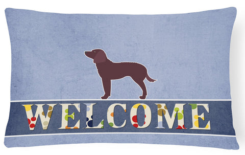 Buy this American Water Spaniel Welcome Canvas Fabric Decorative Pillow BB5505PW1216