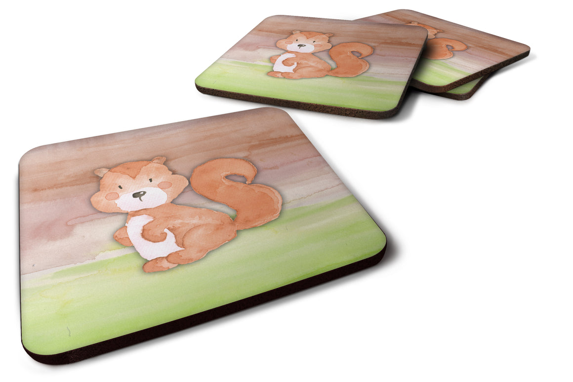 Buy this Squirrel Watercolor Foam Coaster Set of 4 BB7439FC