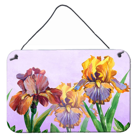 Buy this Purple and Yellow Iris Wall or Door Hanging Prints BB7445DS812