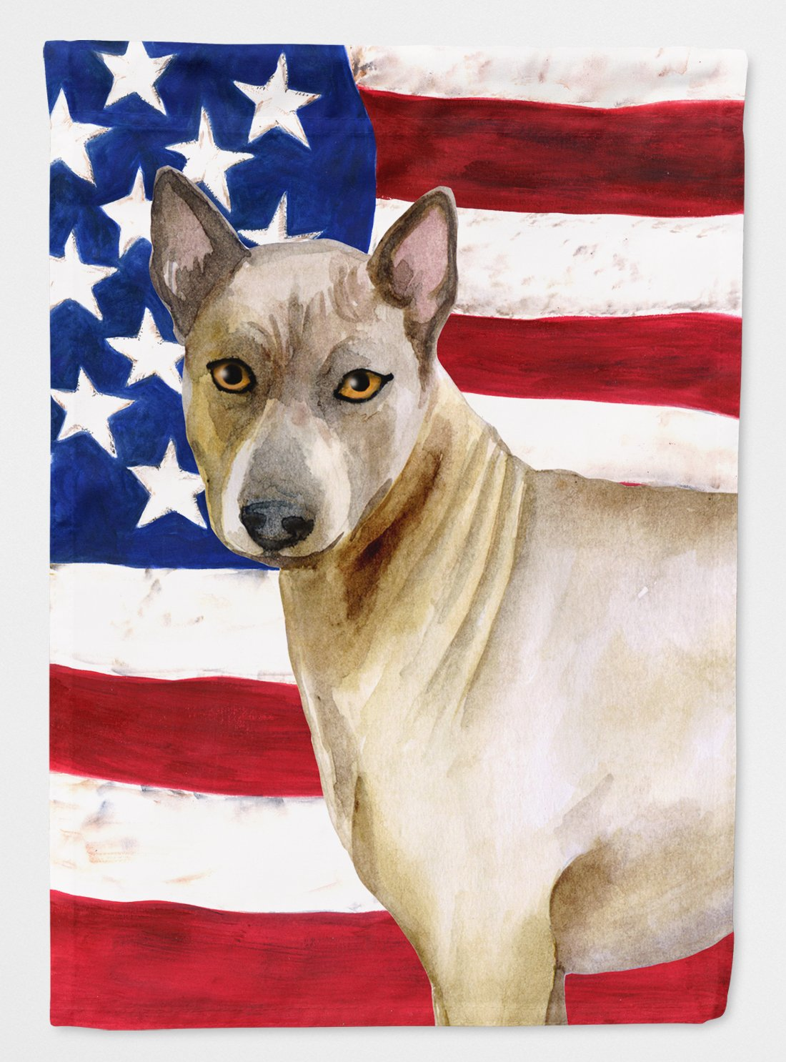Buy this Thai Ridgeback Patriotic Flag Garden Size BB9680GF
