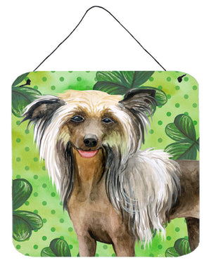 Buy this Chinese Crested St Patrick's Wall or Door Hanging Prints BB9833DS66