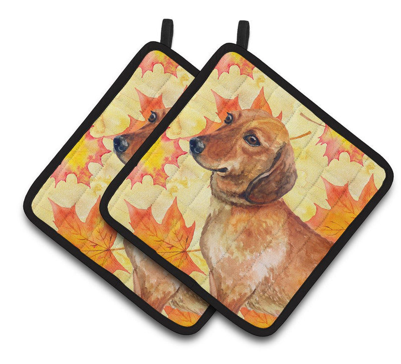 Buy this Dachshund Fall Pair of Pot Holders BB9913PTHD