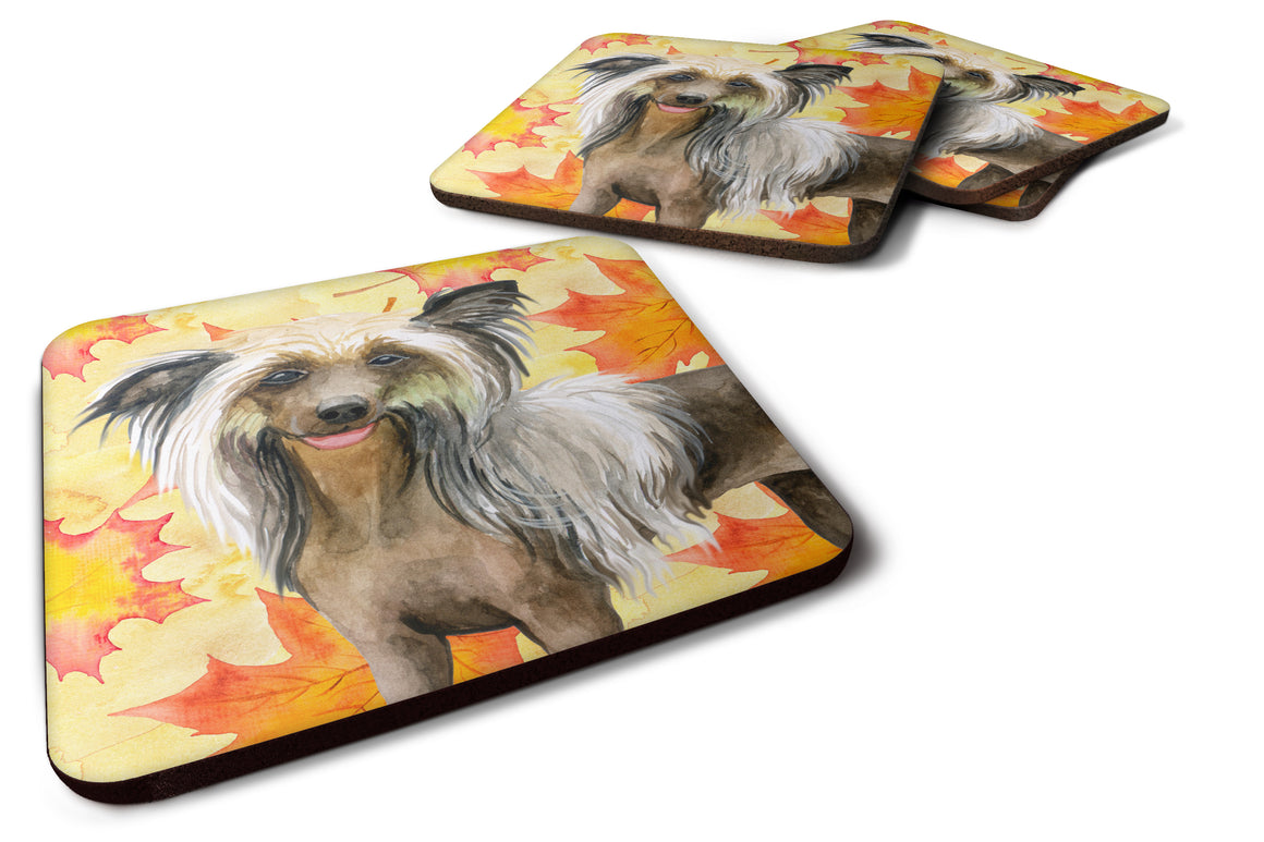 Buy this Chinese Crested Fall Foam Coaster Set of 4 BB9920FC