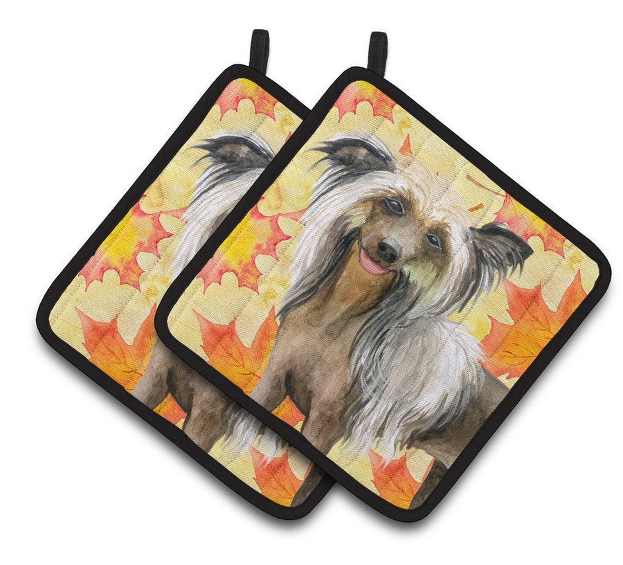 Buy this Chinese Crested Fall Pair of Pot Holders BB9920PTHD