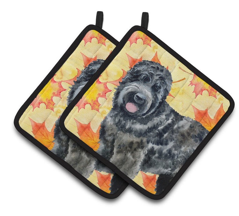 Buy this Black Russian Terrier Fall Pair of Pot Holders BB9938PTHD