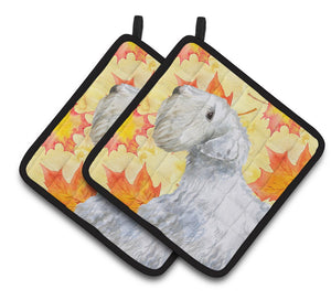 Buy this Sealyham Terrier Fall Pair of Pot Holders BB9945PTHD