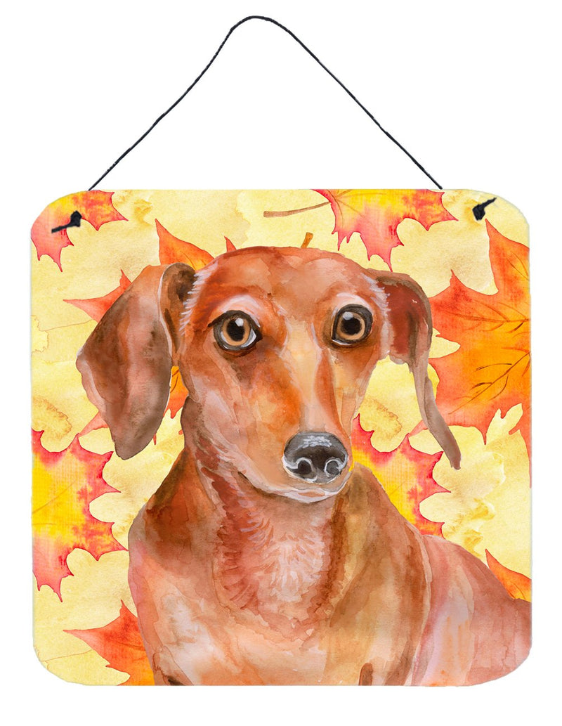 Buy this Red Dachshund Fall Wall or Door Hanging Prints BB9968DS66