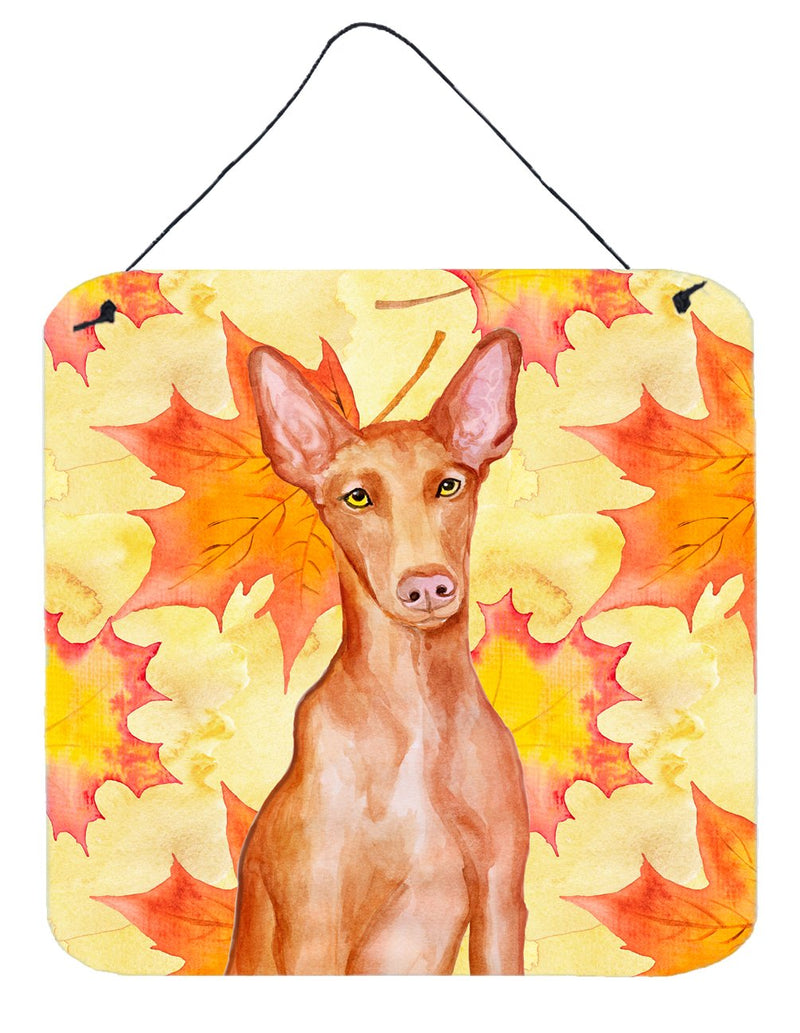 Buy this Pharaoh Hound Fall Wall or Door Hanging Prints BB9976DS66