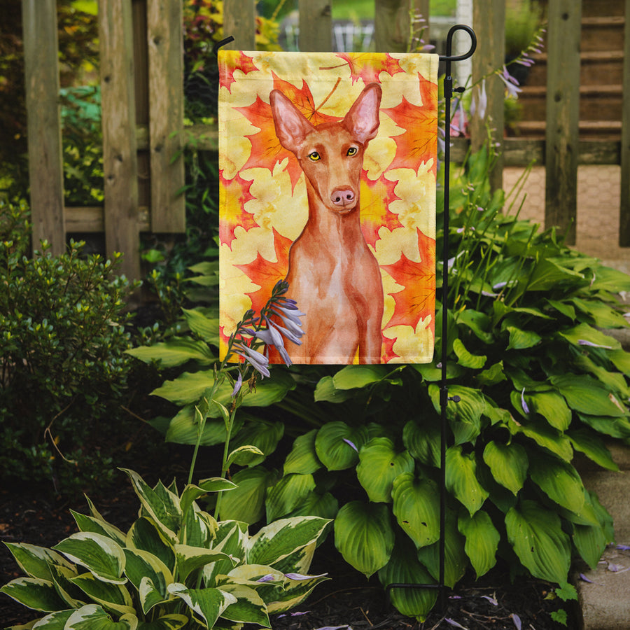 Buy this Pharaoh Hound Fall Flag Garden Size BB9976GF