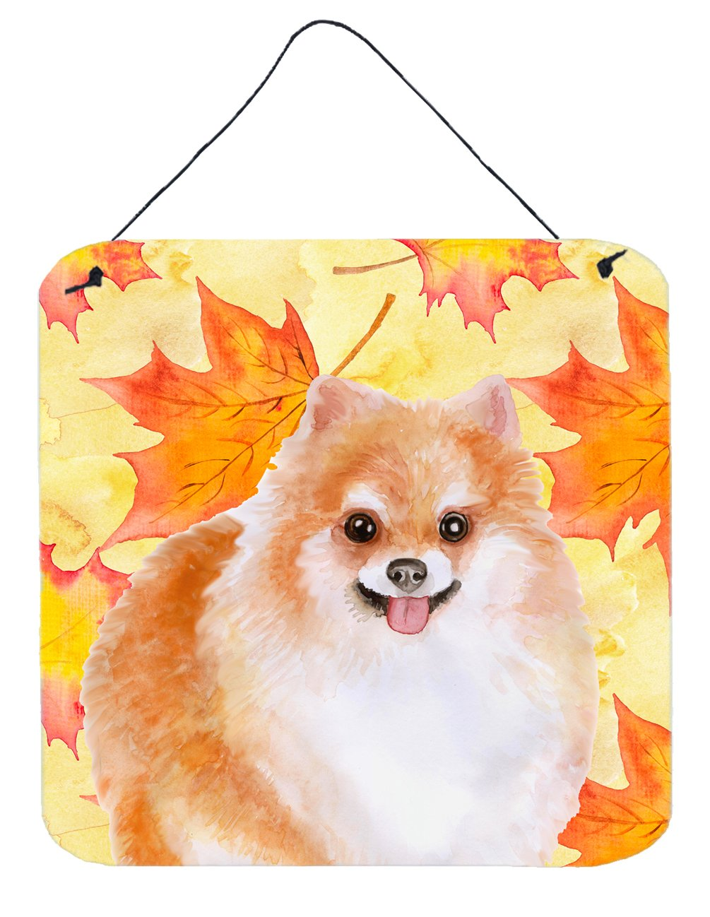 Buy this Pomeranian #2 Fall Wall or Door Hanging Prints BB9977DS66