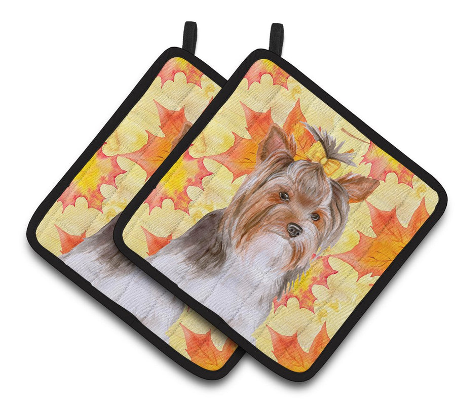 Buy this Yorkshire Terrier #2 Fall Pair of Pot Holders BB9984PTHD