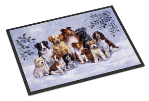 Buy this Winter Dogs Indoor or Outdoor Mat 24x36 BDBA316AJMAT