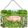 Pig In Dasies by Debbie Cook Wall or Door Hanging Prints by Caroline's Treasures