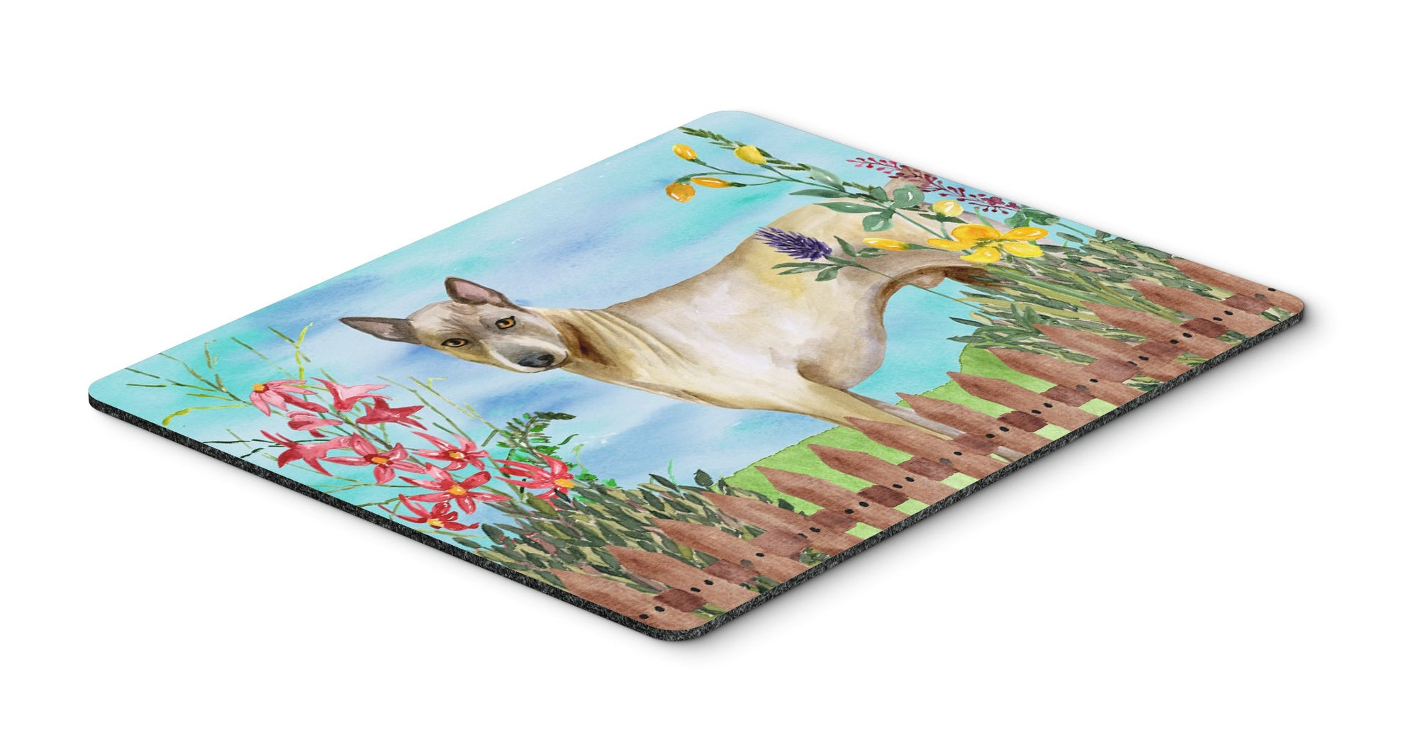 Buy this Thai Ridgeback Spring Mouse Pad, Hot Pad or Trivet CK1242MP