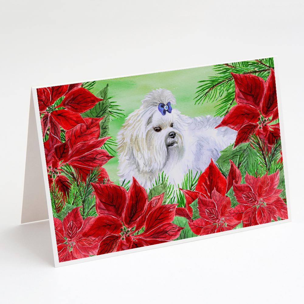 Buy this Maltese Poinsettas Greeting Cards and Envelopes Pack of 8
